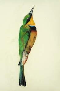 Small Bee Eater